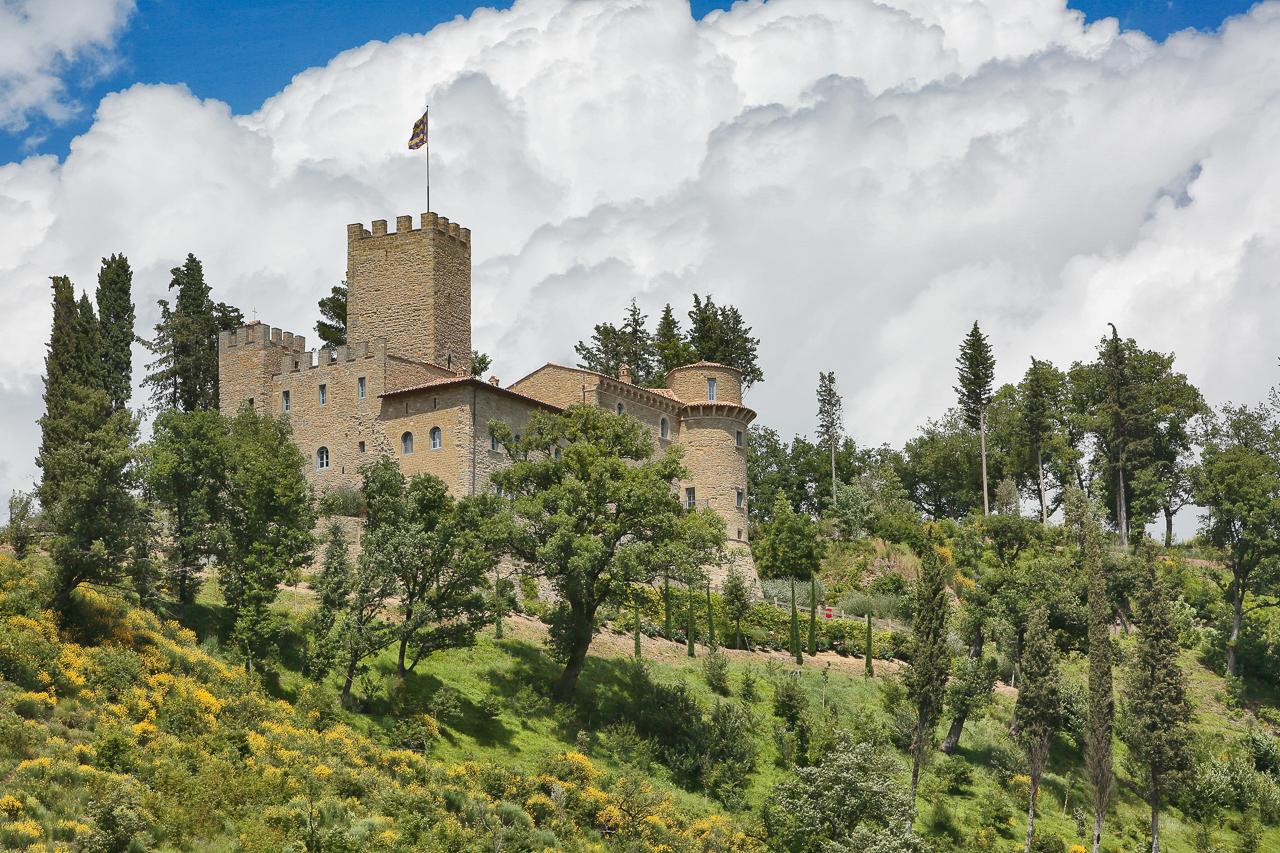 Il Castello di Carbonanan visto dalla SS219