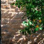 Dettaglio dei giardini del Castello di Carbonana a seguito degli interventi di restauto